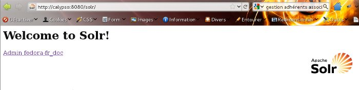 Page d'accueil de l'application Solr